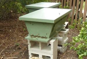 New Top Bar Hives