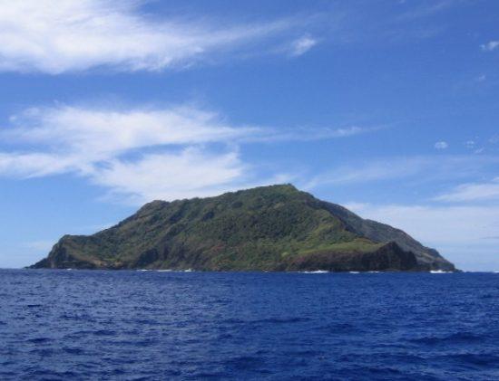 Pitcairn Island Honey